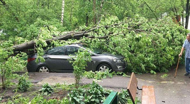 Hat ember halt meg, pusztító vihar csapott le a fővárosra