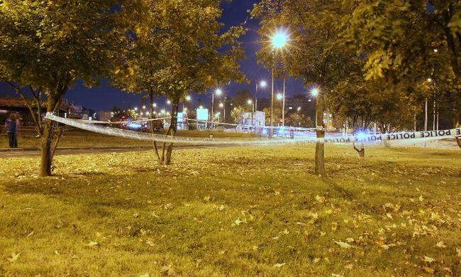 Vér folyt Budapesten: parkban szúrtak mellkason egy férfit