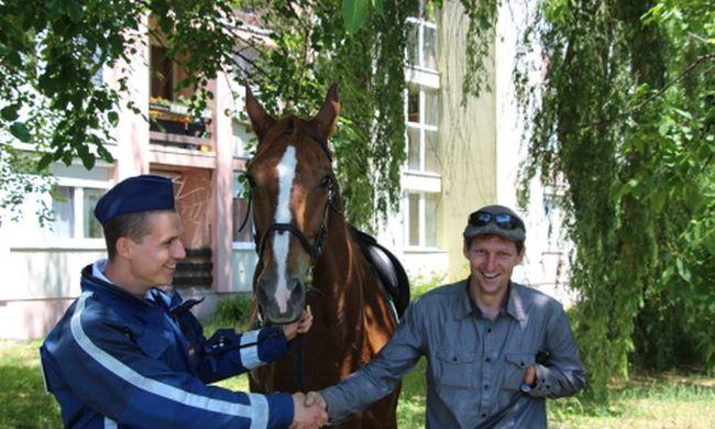 Ledobta gazdáját és elvágtatott egy ló Tatán, rendőrnek kellett közbelépnie