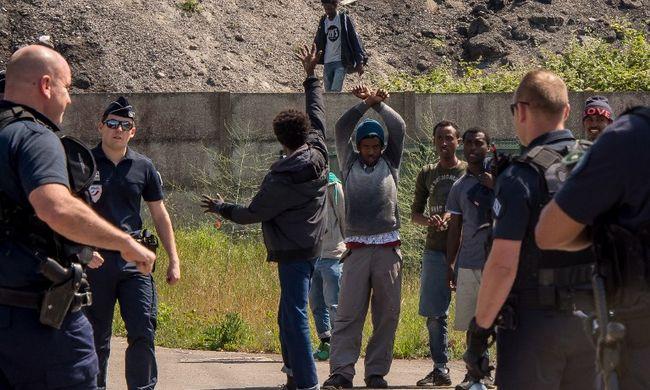 Több száz migránst űztek ki az erdőből