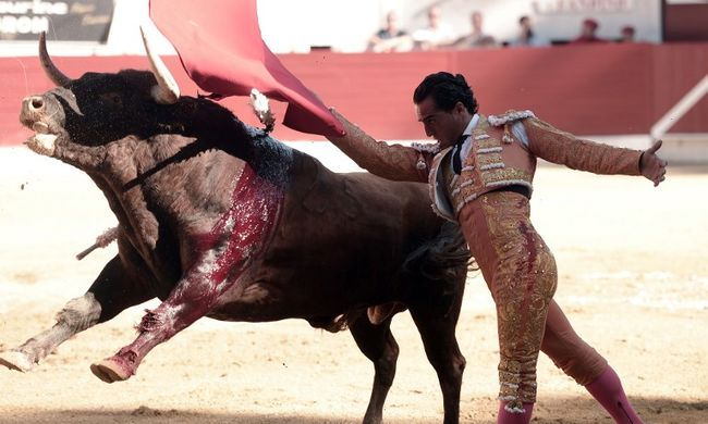 Vérfürdő a bikaviadalon: kínhalált halt az ismert torreádor