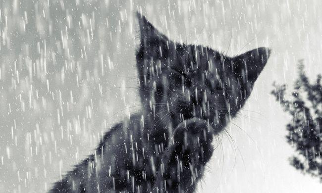 Kiadták a riasztást: havas eső tör ránk a dermesztő hidegben