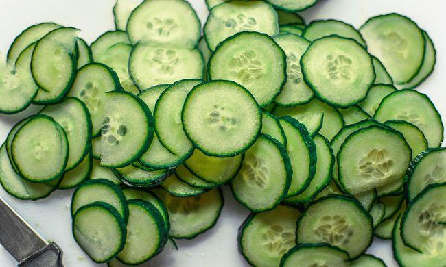 Jó hírt közöltek a gazdák: idén lesz elég uborka