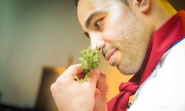 Különös összefüggést fedeztek fel a szaglásunk és a testsúlyunk között