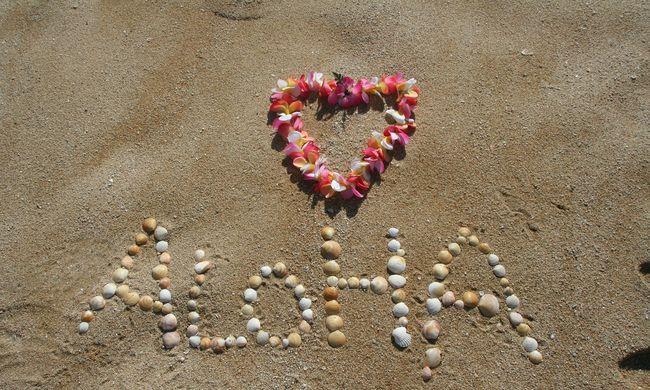 Hawaii-on kaptak randit, mert még soha nem találkoztak, csak üzengettek