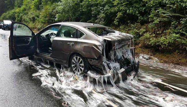 Undorító baleset történt, a kocsikra ömlött a kamion rakománya