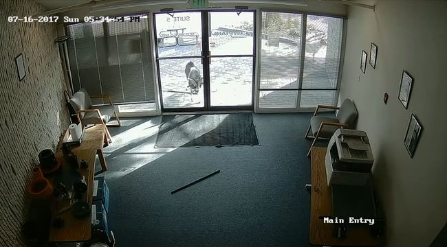 Reggel szétvert irodába érkeztek a dolgozók, alig akarták elhinni a kamera felvételeit