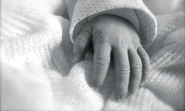 Rokonai megbocsátottak az érdi csecsemőgyilkos anyának, aki popsitörlővel ölt