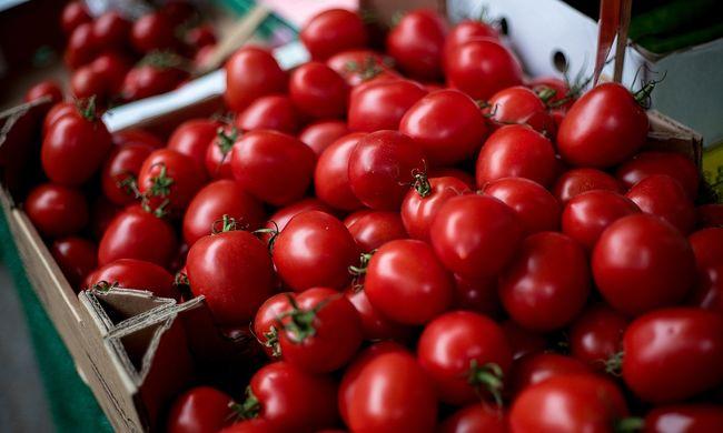 Nagy a baj: tönkremehet a termés a hosszan tartó hőség miatt