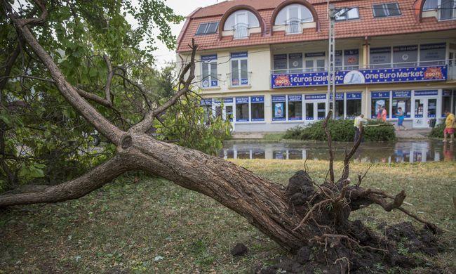 Lecsapott a vihar, főként a kidőlt fák okoznak gondot Budapesten