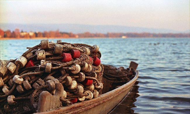 Halászokat gyilkoltak a terroristák