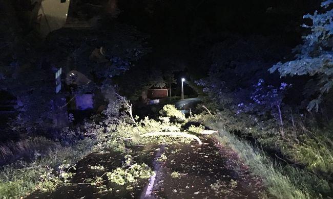 Áldozatot követelt a vihar Vas megyében: kétgyerekes anyuka hunyt el
