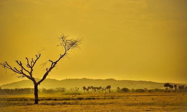 Kézzel fogható a feszültség: a klímaváltozás már közvetlenül hat az emberek életére
