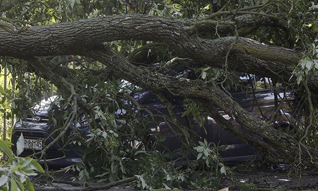 Tragédiák sora kísérte a vihart, két gyerek is meghalt
