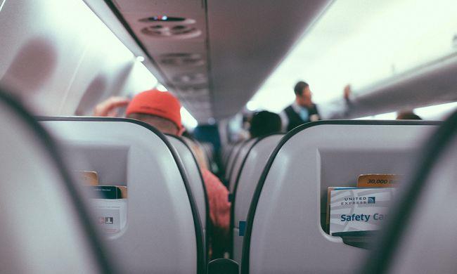 Botrány a repülőn: segítőkutya harapta meg a kislányt