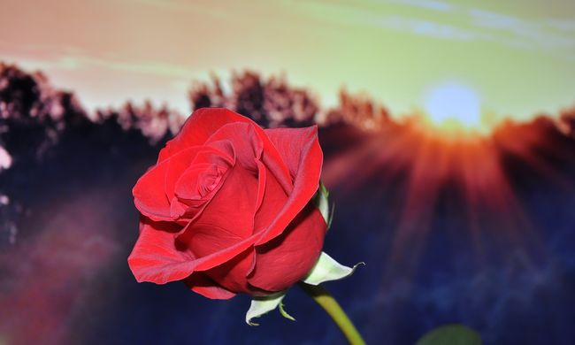 Gyászol Borsodnádasd: így búcsúztak szerettei a megölt Csengétől