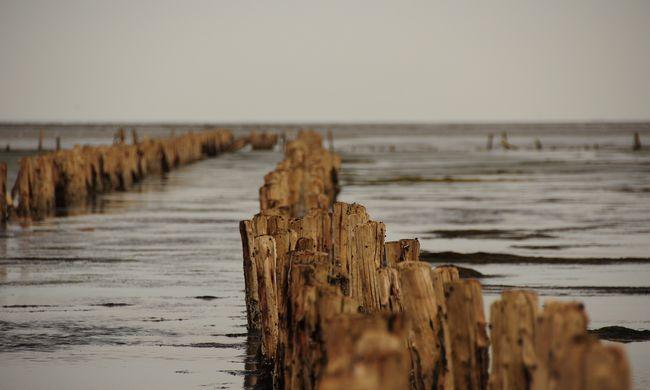 Riasztó adatokat közöltek az Északi-tenger vizéről