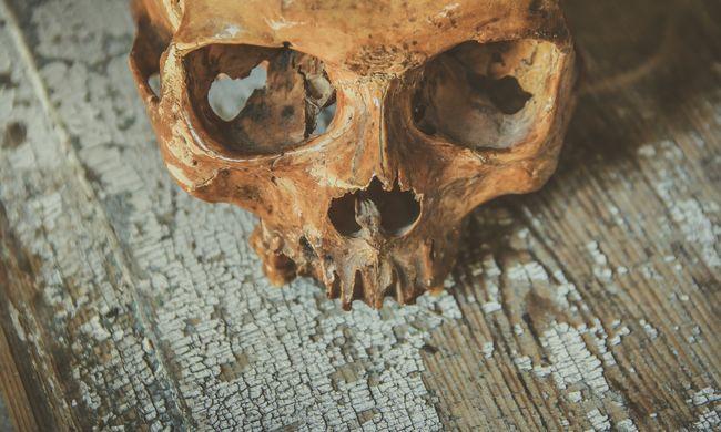 Kirándulás közben találtak elhagyott emberi koponyát, senki sem tudja ki lehet a halott