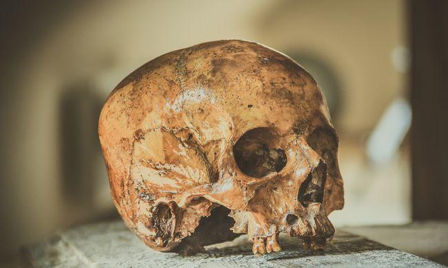 Rémisztő felfedezés: temetőre bukkantak az óceán mélyén
