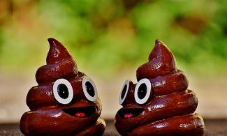 vélemények a banán kereskedésére szolgáló robotokról passzív jövedelem
