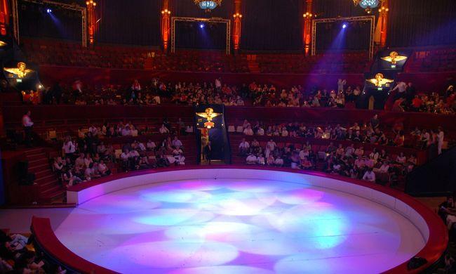 Baleset történt a debreceni cirkuszban, mentőt kellett hívni