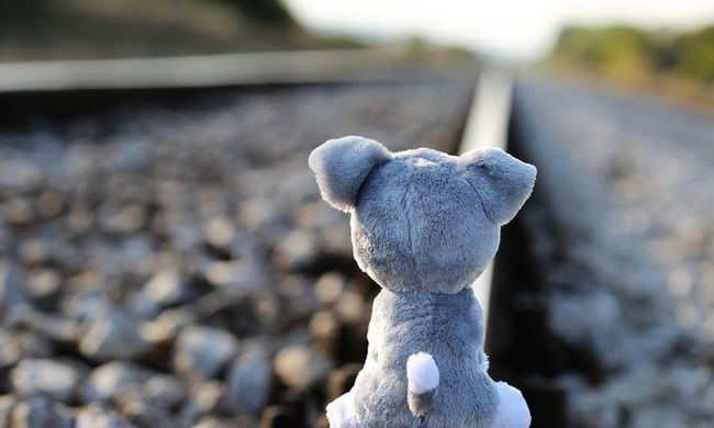 A telefonját nézte az iskolás, halálra gázolta a vonat