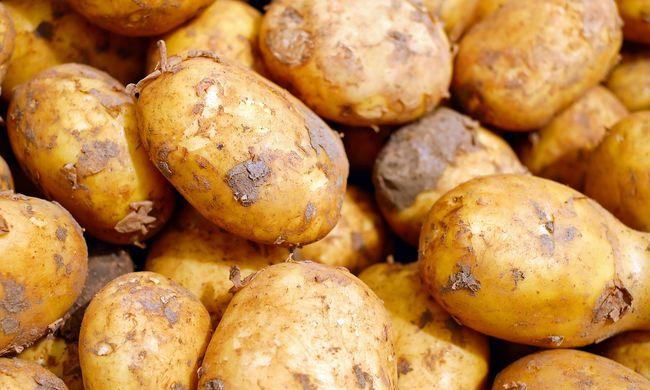 Már 300 forint a krumpli, de még most jön a drágulás java