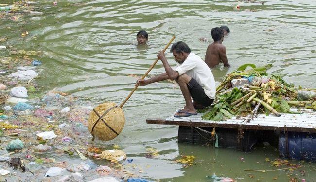 Borzalmas következményei vannak a szennyezésnek: ez történik az élőlényekkel