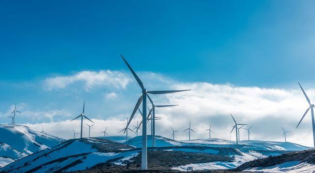 Ezzel eddig nem számolt az emberiség: meglepő következményei vannak a szélerőművek terjedésének