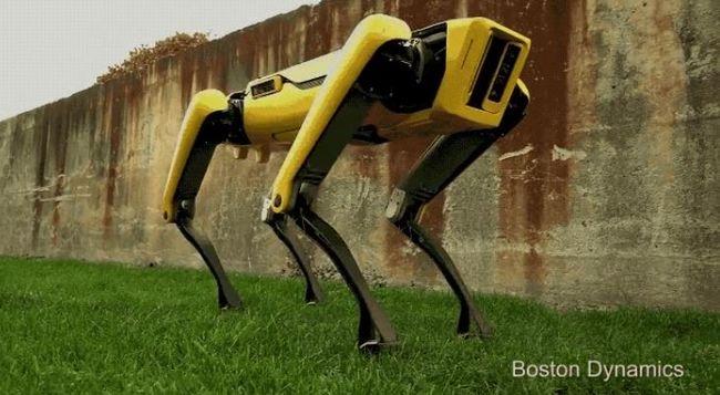 Félelmetes találmány: Ön örökbe fogadna egy ilyen robotkutyát?