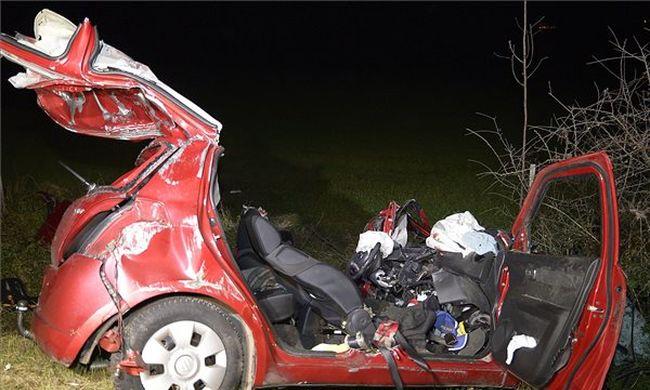 Végzetes baleset a főúton: szarvassal és teherautóval ütköztek, ketten meghaltak