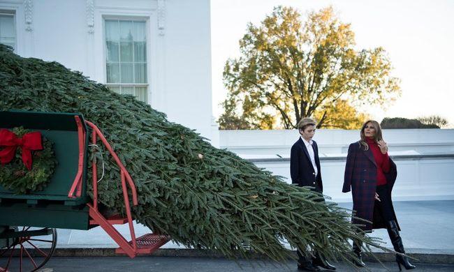 A Fehér Házba megérkezett a karácsony, így örült neki a Trump-család