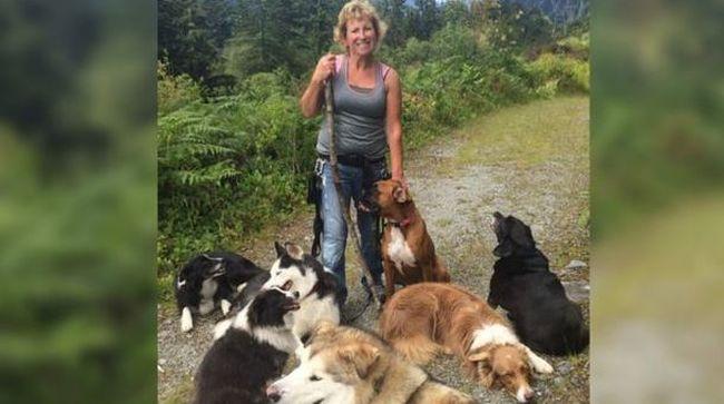 Felosztották maguk között a feladatokat, így mentették meg gazdájukat a kutyák