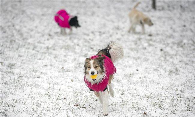 Erős széllel érkezik a havazás, ráadásul jönnek a mínuszok is