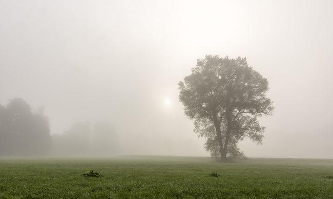 Kiadták a vészjelzést, itt nehezíti meg a napot a sűrű köd