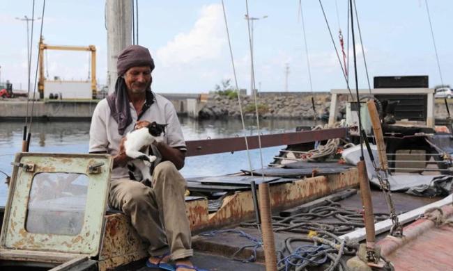 Csodás megmenekülés: több mint fél évig sodródott macskájával kettesben a tengeren