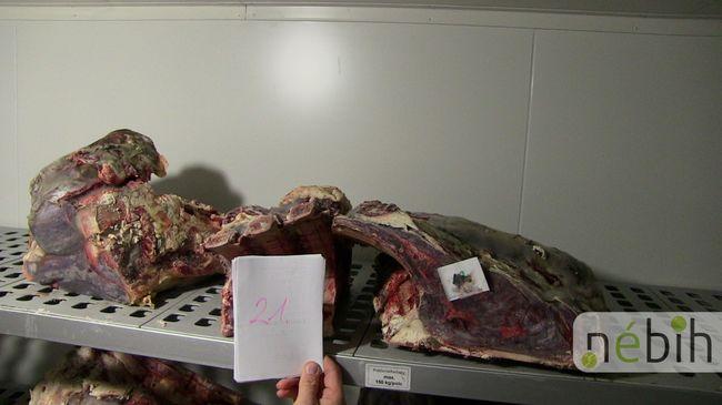 Undorító állapotok, közel egy tonna húst vontak ki a forgalomból