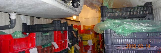 Gusztustalan alapanyagokat találtak az ellenőrök a Pest megyei házhoz szállítóknál