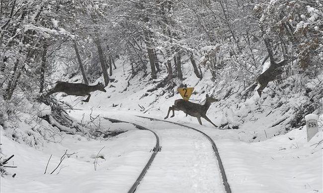 Egyre durvul a hóhelyzet: éjszakára a fűtés nélküli vonaton ragadtak az utasok