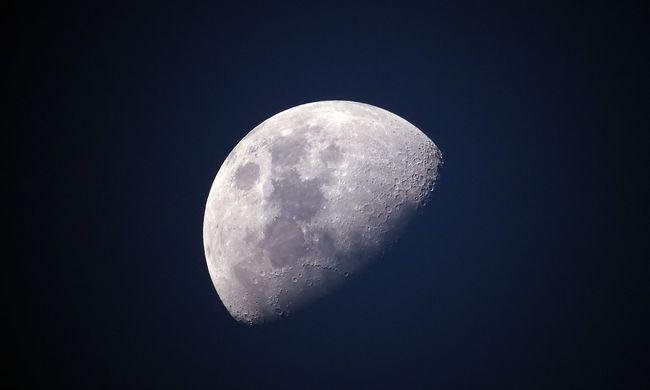 Életet visznek a Holdra: virágzás várható az égitesten