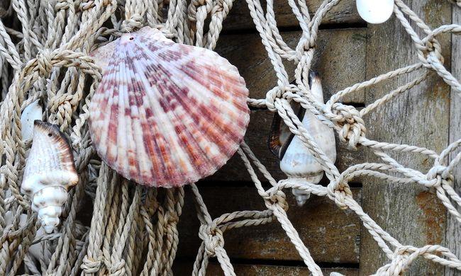 Megőrizték a különleges hagyományt, ezen a szigeten még a boltokban is kagylóval fizetnek