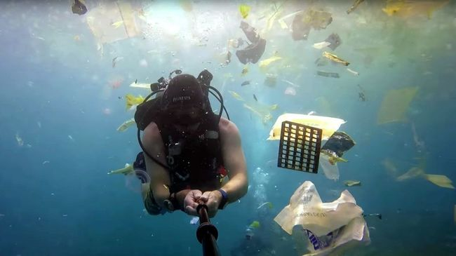 Nagyon rossz a helyzet: egy búvár videóra vette, mi úszkál az óceánban