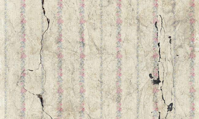 Rég nem látott erősségű földrengés rázta meg a földet szomszédainknál