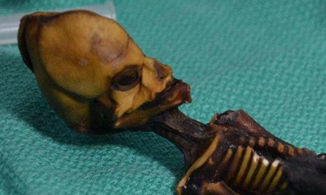 Megoldódott a titokzatos múmia rejtélye: ezért olyan hátborzongató a kis test
