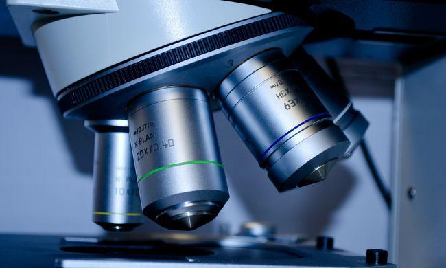 A tudósok is kiakadtak, megszületett a világ első génmódosított ikerpárja