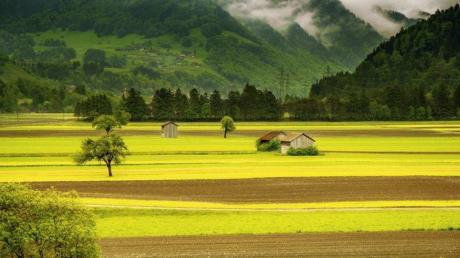 Elöntötte a víz a hazai termőföldeket, meghirdették a belvízi védekezést