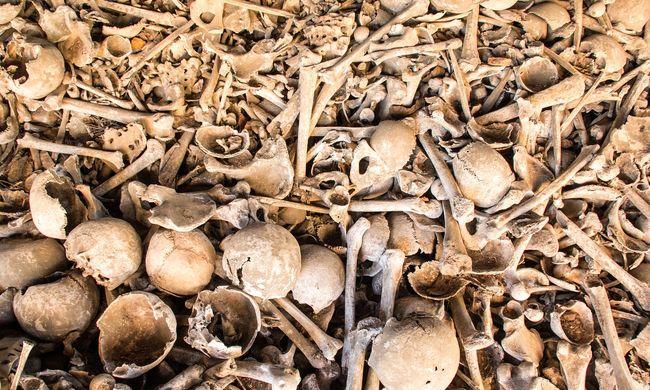Borzalmas felfedezés: gyerek tömegsírra bukkantak, több tucat kitépett szívű gyerek volt a sírban