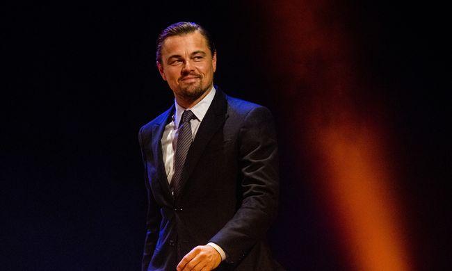 Hatalmas megtiszteltetés érte Leonardo DiCapriót, a tudósok így értékelték munkáját