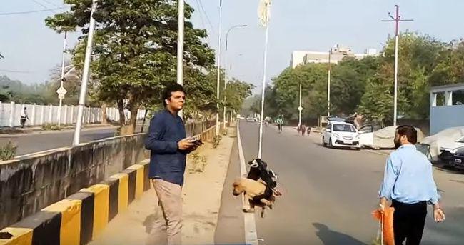 Síró kiskutyára figyelt fel egy férfi az utcán, meglepő dolgot tett
