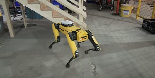 Elképesztő fejlesztés, robotkutyát dobnak piacra